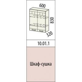 10.01.1 Шкаф-сушка